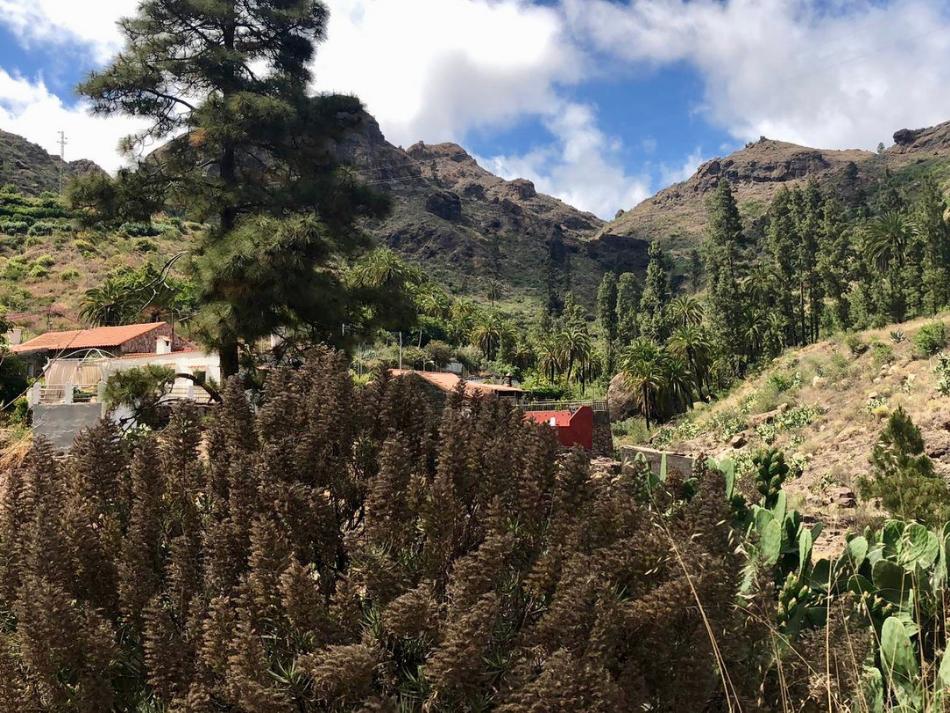 Wonen in het binnenland van Gran Canaria tussen de bergen en natuur