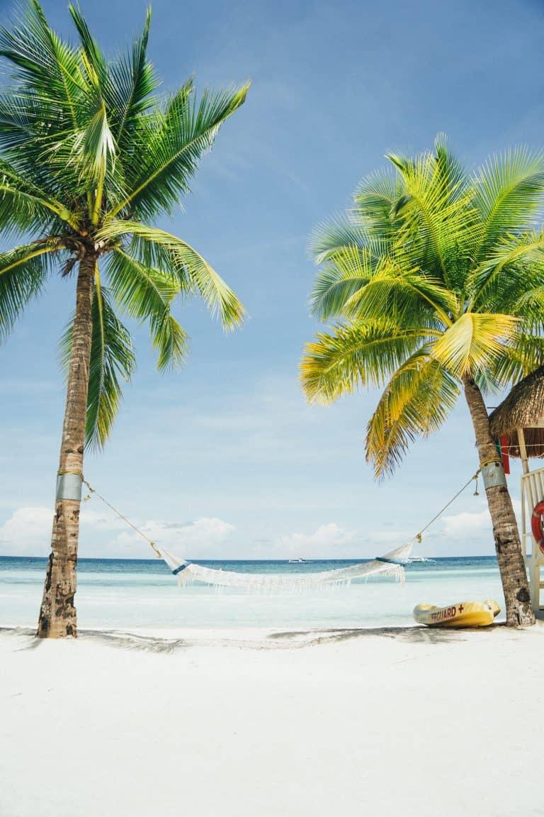Emigreren Gran Canaria - Het emigratieverhaal van Caroline (26) op Curaçao - Strand met palmbomen