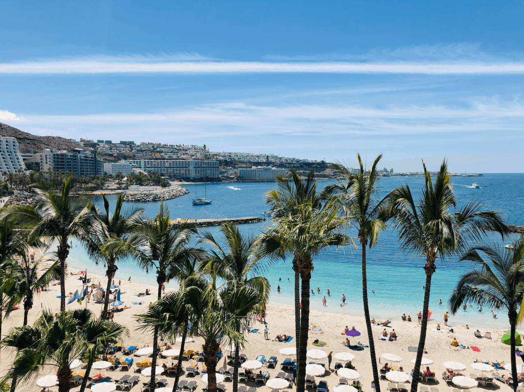 Palmbomen op het Anfi del Mar strand op Gran Canaria