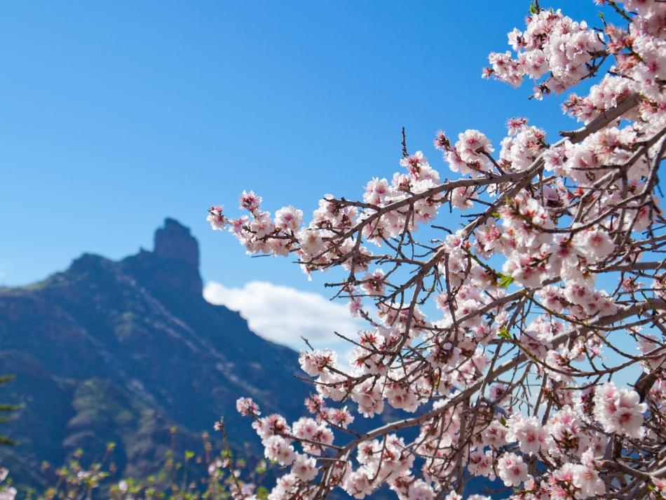 5 x verborgen plekjes op Gran Canaria