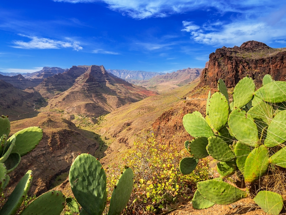 De 5 mooiste natuurgebieden op Gran Canaria